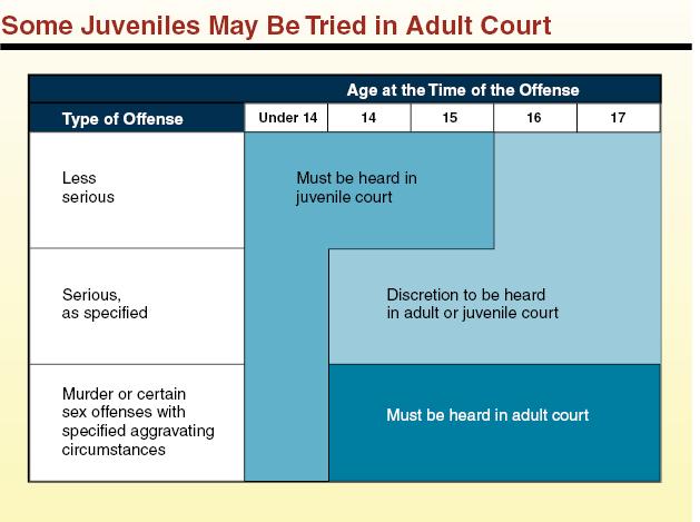 define discretion in criminal justice