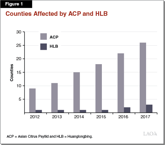 Figure 1 - Counties AFfected by ACP and HLB