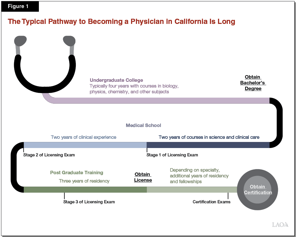 Figure 1 - The Typical Pathway to Becoming a Physician in California is Long
